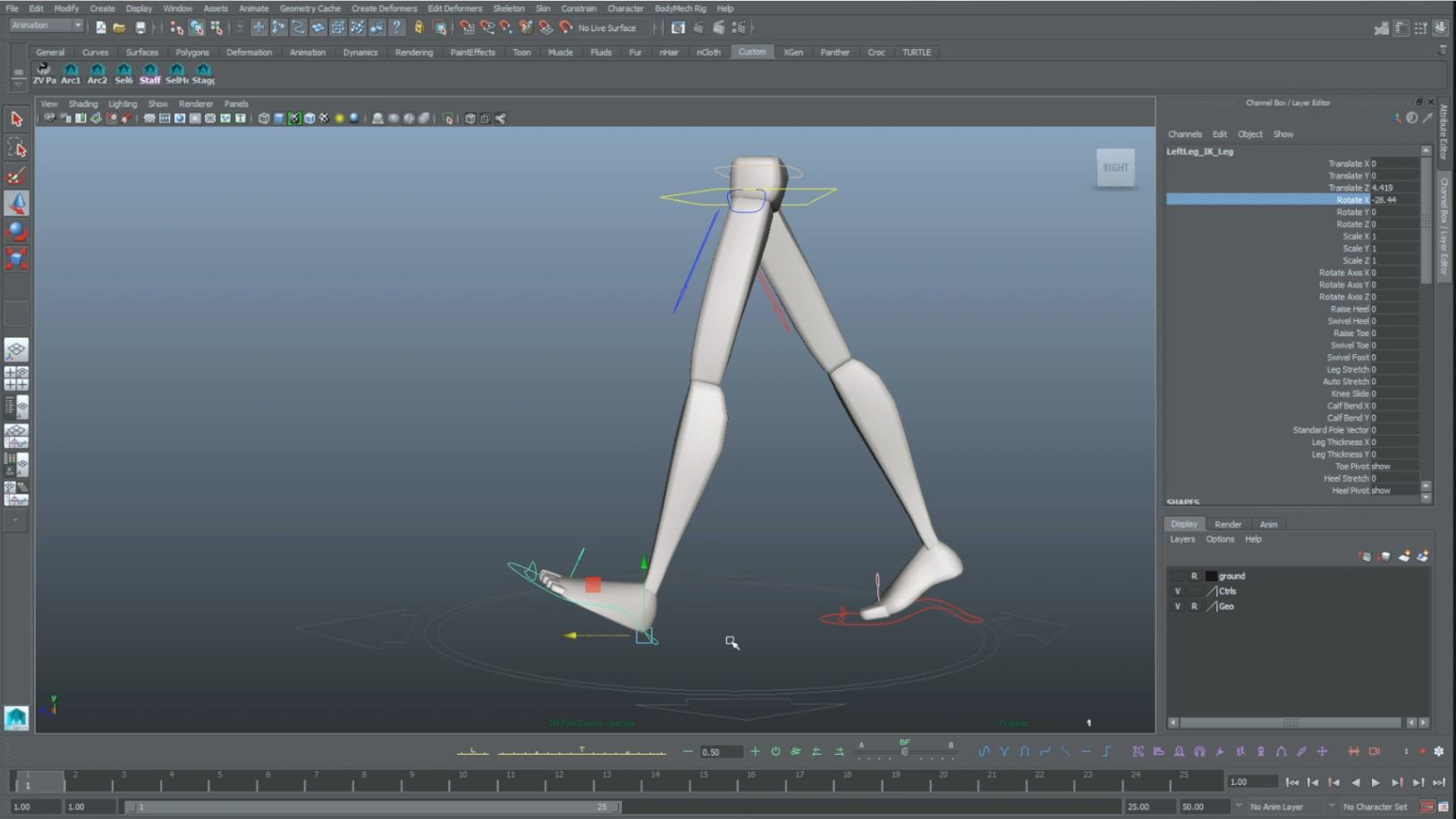 animation walk cycle contact