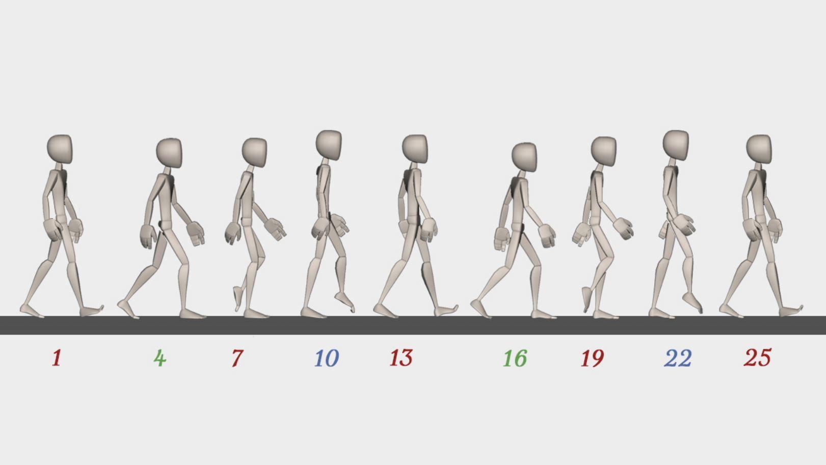 walk cycle animation visual formula