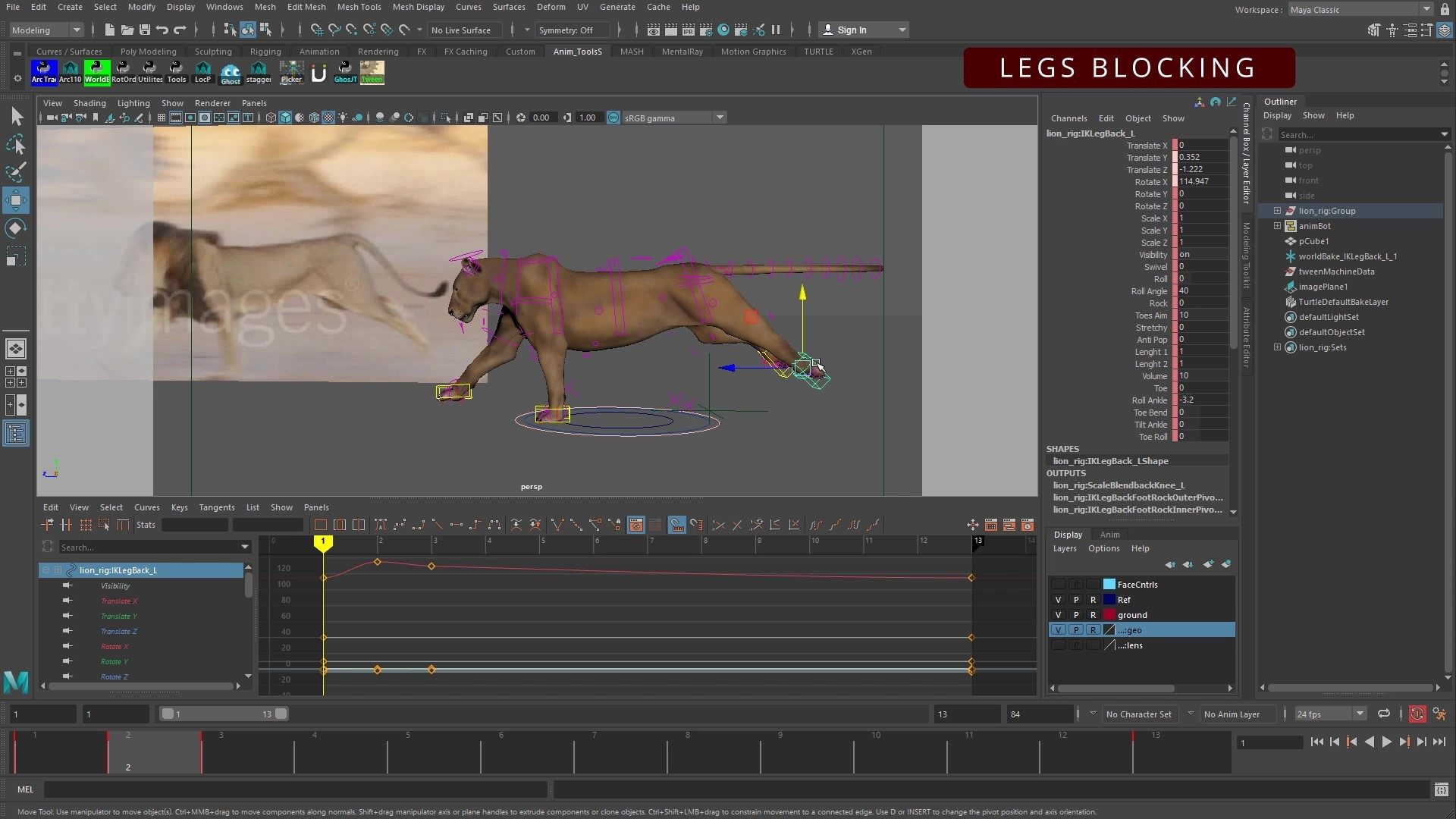 Cat-Run-Cycle-Animation-Tutorial-Step2