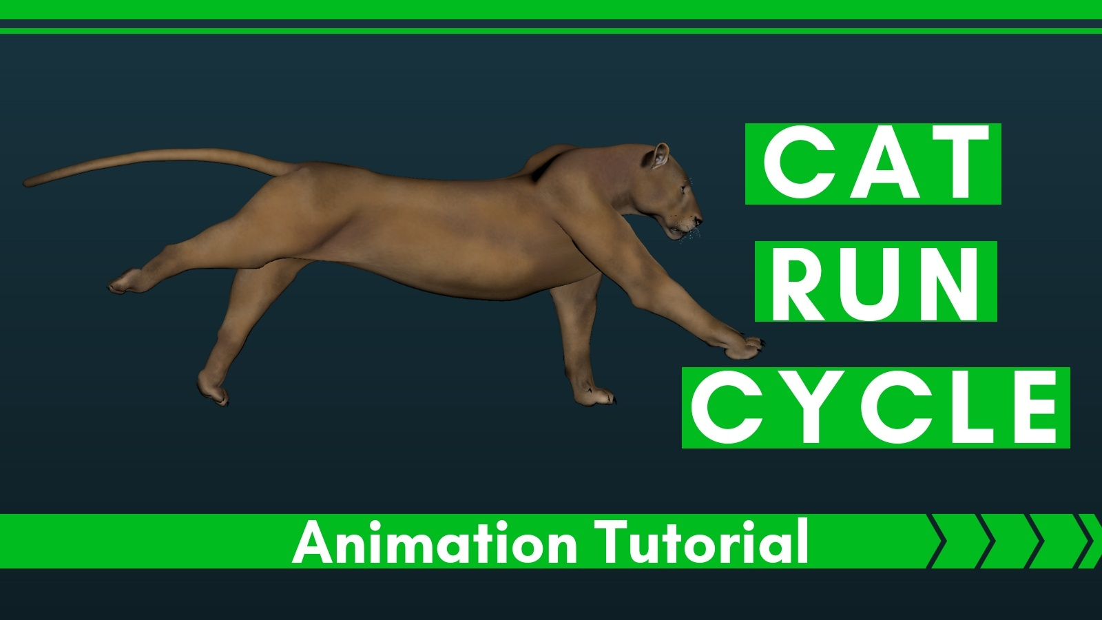 Cat-Run-Cycle-Animation-Tutorial